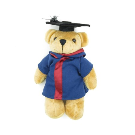 Teddy Bears Customisation. Corporate Gifts Singapore (12)