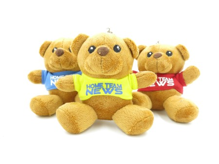 Teddy Bears Customisation. Corporate Gifts Singapore (3)