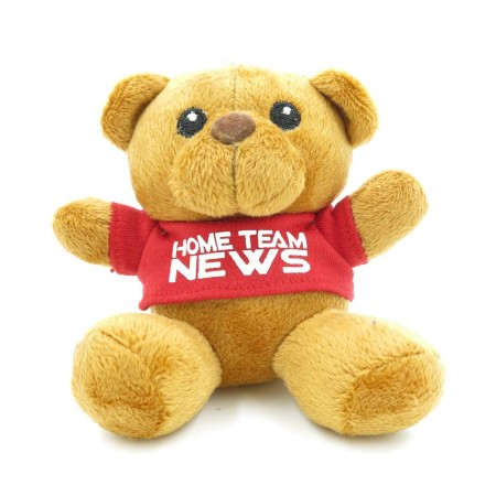 Teddy Bears Customisation. Corporate Gifts Singapore (5)