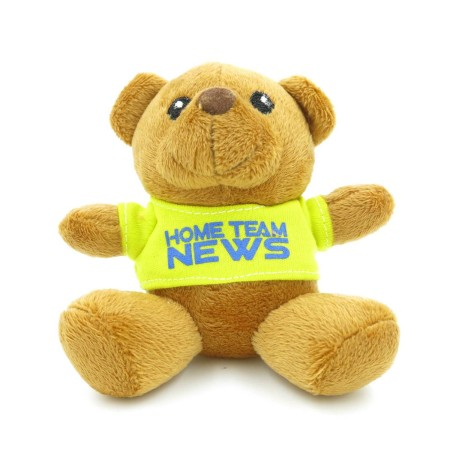 Teddy Bears Customisation. Corporate Gifts Singapore (6)
