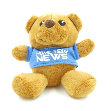 Teddy Bears Customisation. Corporate Gifts Singapore (7)